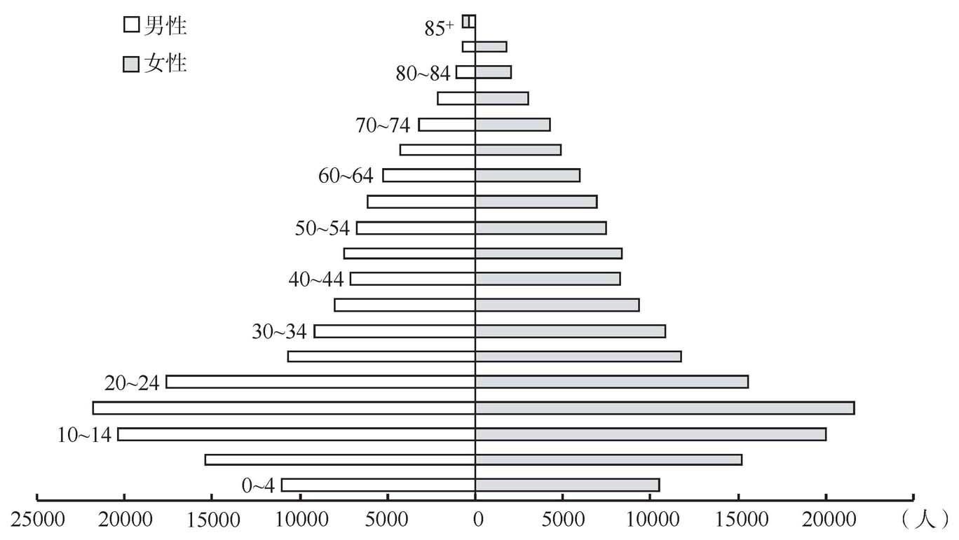 82年马提尼克人口年龄金字塔